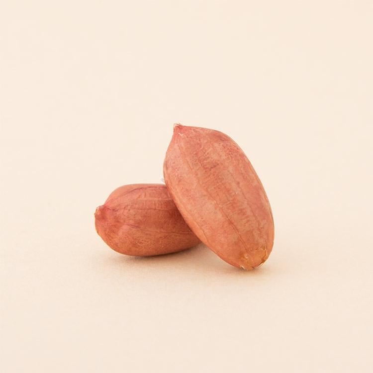 落花生 ピーナッツ 新豆